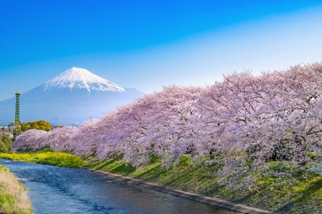ญี่ปุ่น 2