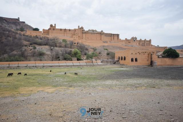 Jaipur (1)-1