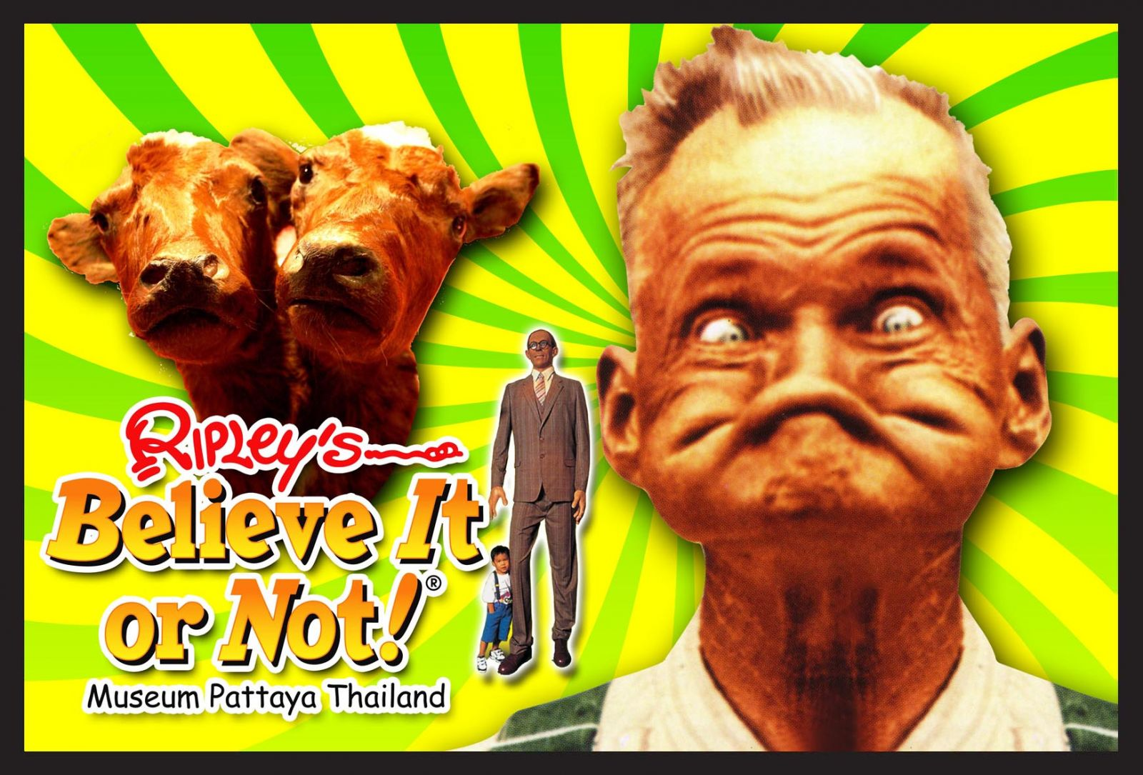 the ripleys believe it or not 9journeythailand
